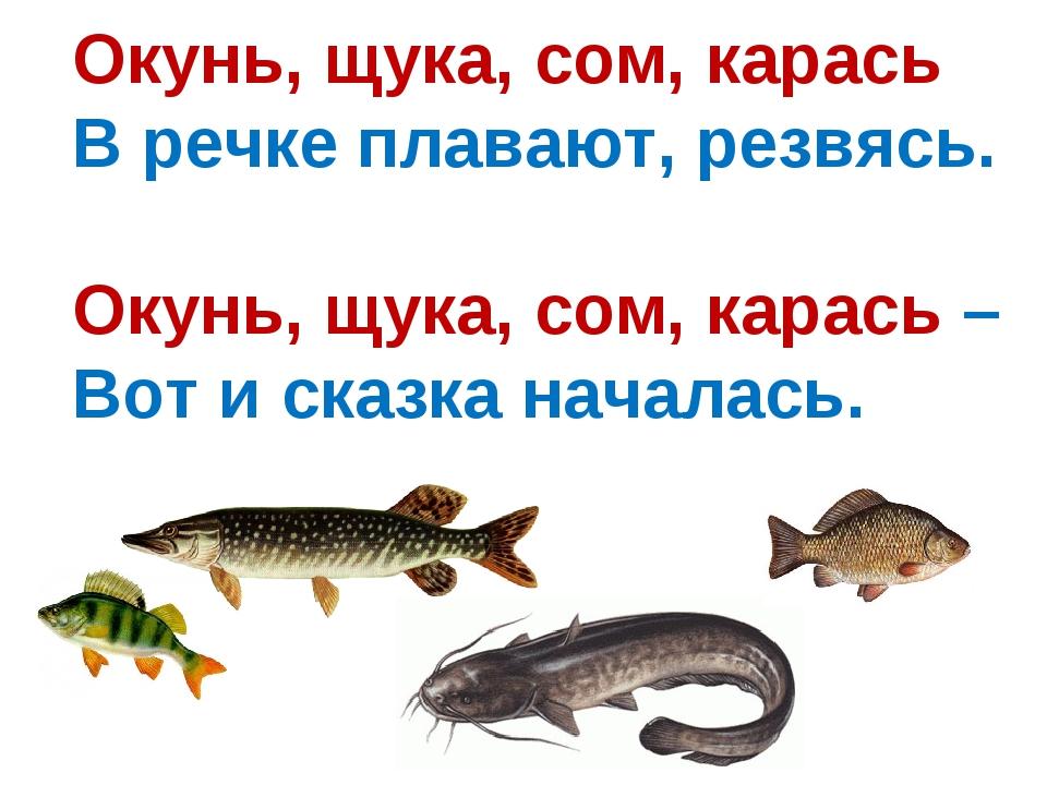 Окунь, щука, сом, карась В речке плавают, резвясь. Окунь, щука, сом, карась –...