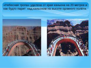 «Небесная тропа» удалена от края каньона на 20 метров и как будто парит над к