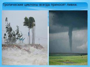 Тропические циклоны всегда приносят ливни.