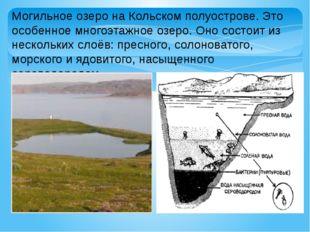 Могильное озеро на Кольском полуострове. Это особенное многоэтажное озеро. Он