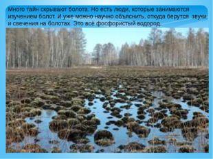 Много тайн скрывают болота. Но есть люди, которые занимаются изучением болот.