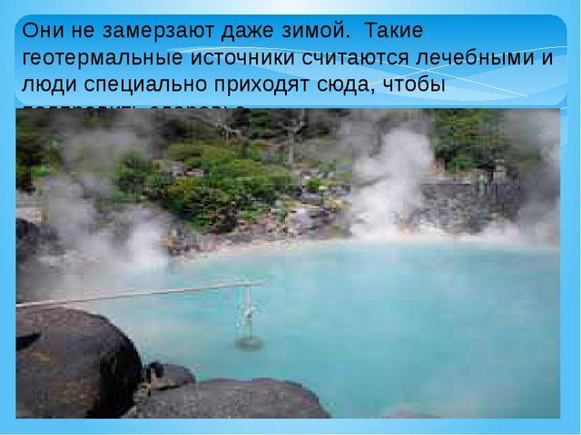 Они не замерзают даже зимой. Такие геотермальные источники считаются лечебным...