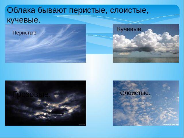 Облака бывают перистые, слоистые, кучевые. Перистые. Кучевые. Слоистые. Грозо...