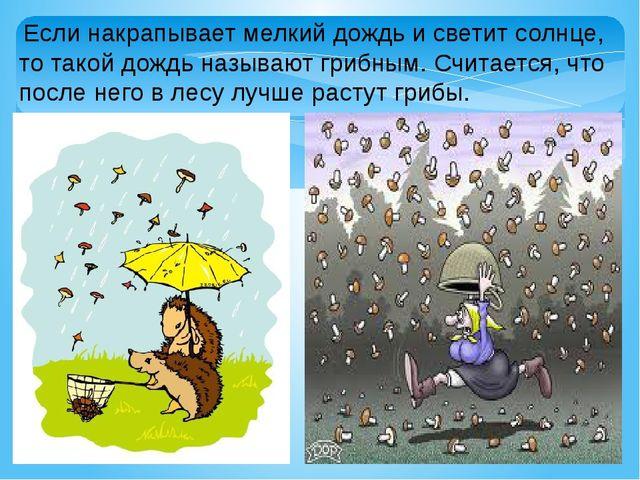 Если накрапывает мелкий дождь и светит солнце, то такой дождь называют грибн...