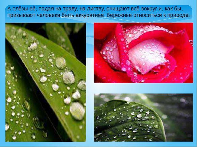 А слёзы её, падая на траву, на листву, очищают всё вокруг и, как бы, призываю...