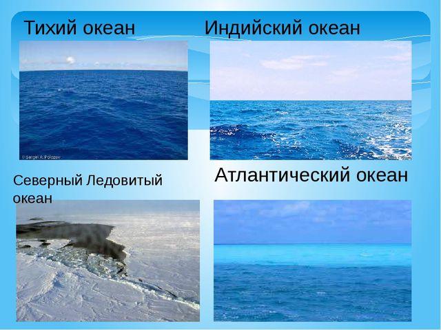 Тихий океан Индийский океан Северный Ледовитый океан Атлантический океан