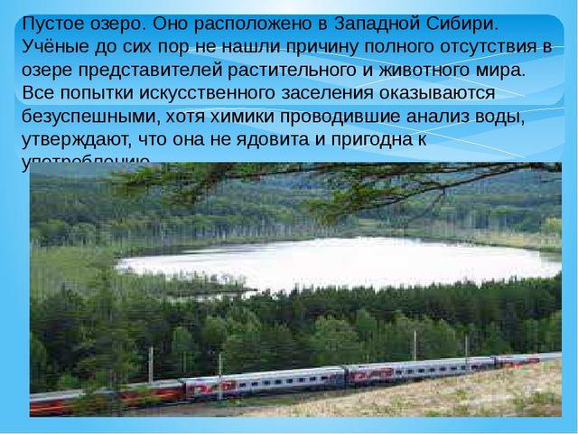 Пустое озеро. Оно расположено в Западной Сибири. Учёные до сих пор не нашли п...