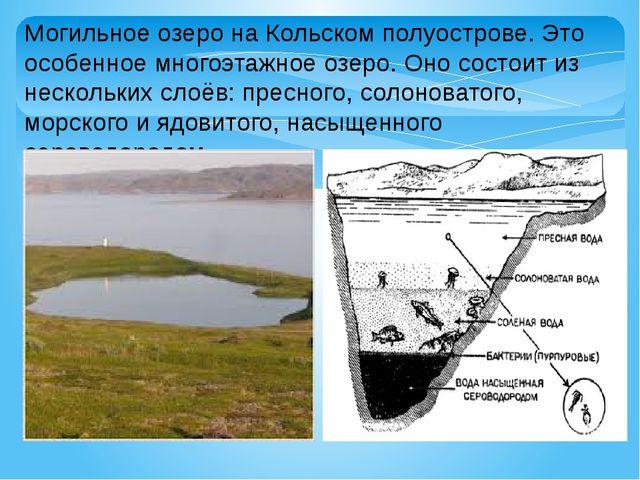 Могильное озеро на Кольском полуострове. Это особенное многоэтажное озеро. Он...