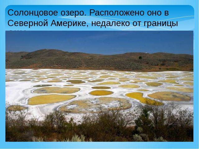 Солонцовое озеро. Расположено оно в Северной Америке, недалеко от границы США.
