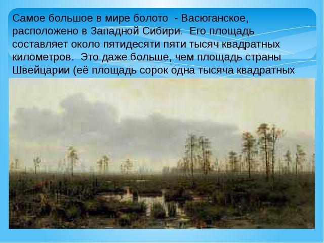 Самое большое в мире болото - Васюганское, расположено в Западной Сибири. Его...
