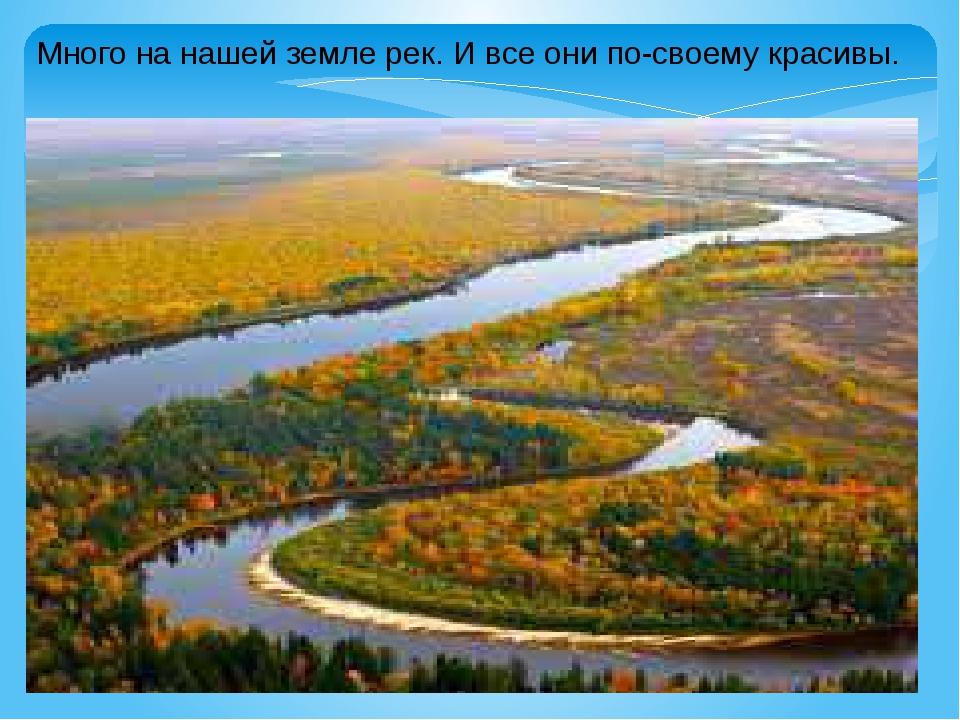 Много на нашей земле рек. И все они по-своему красивы.
