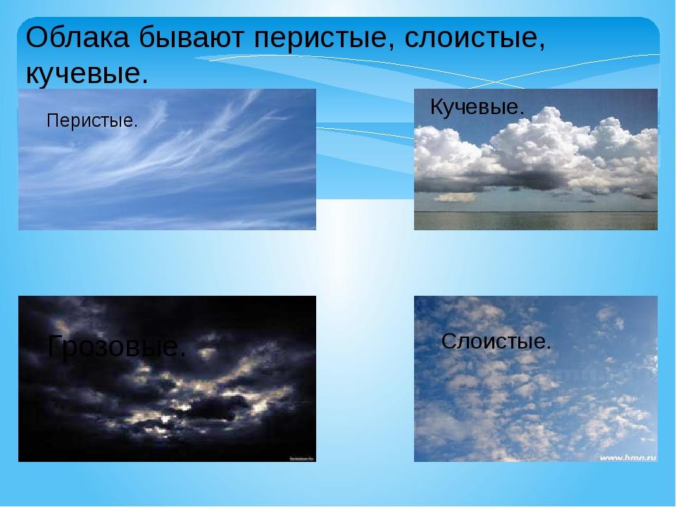 виды облаков фото и название или шафран
