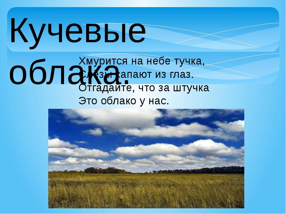 Кучевые облака. Хмурится на небе тучка, Слёзы капают из глаз. Отгадайте, что...