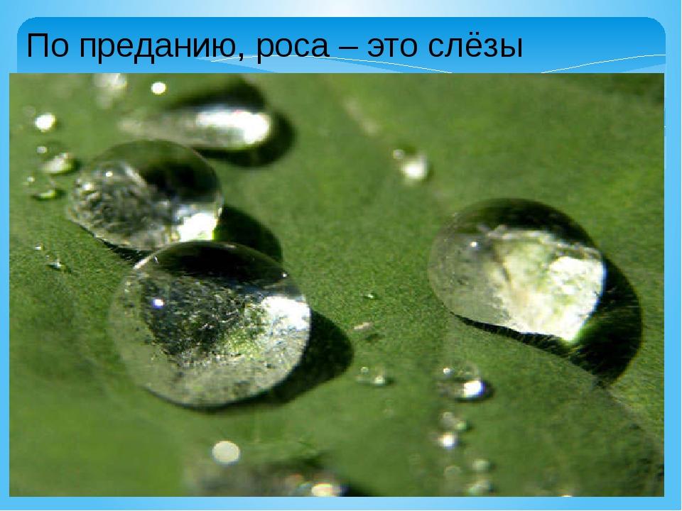 По преданию, роса – это слёзы Природы.