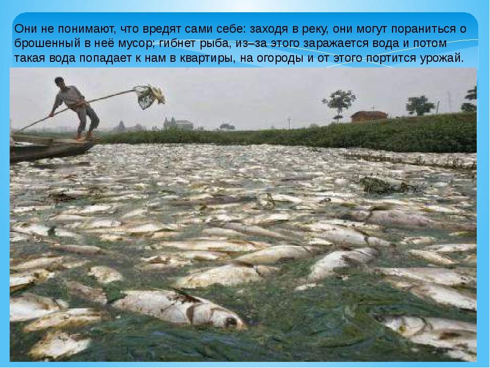 Они не понимают, что вредят сами себе: заходя в реку, они могут пораниться о...