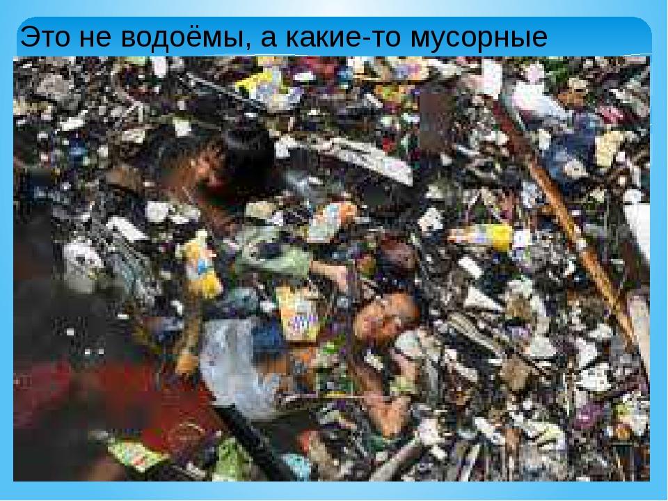Это не водоёмы, а какие-то мусорные свалки.