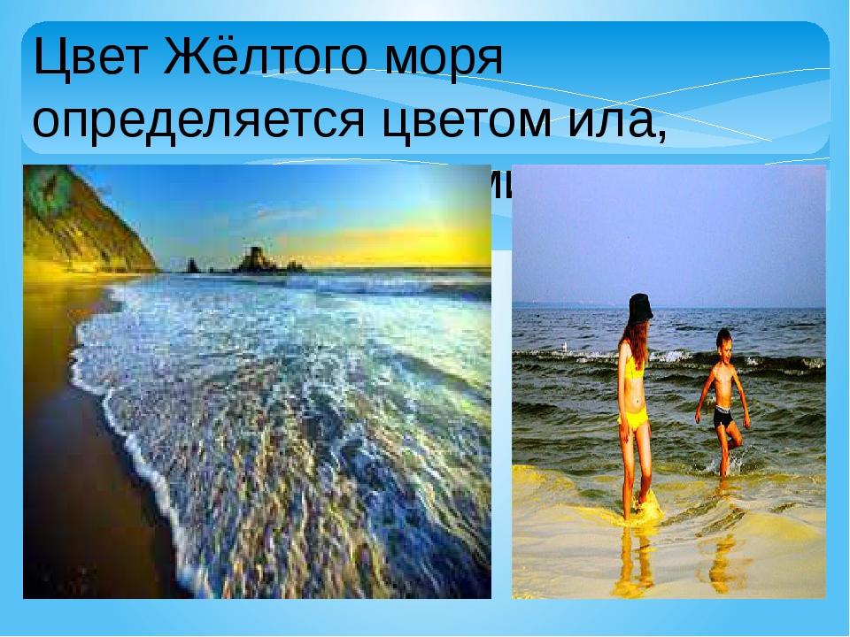 Цвет Жёлтого моря определяется цветом ила, приносимого реками.