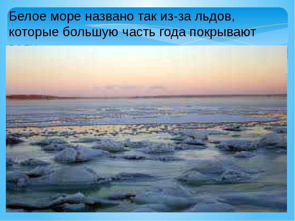 Белое море названо так из-за льдов, которые большую часть года покрывают воду.