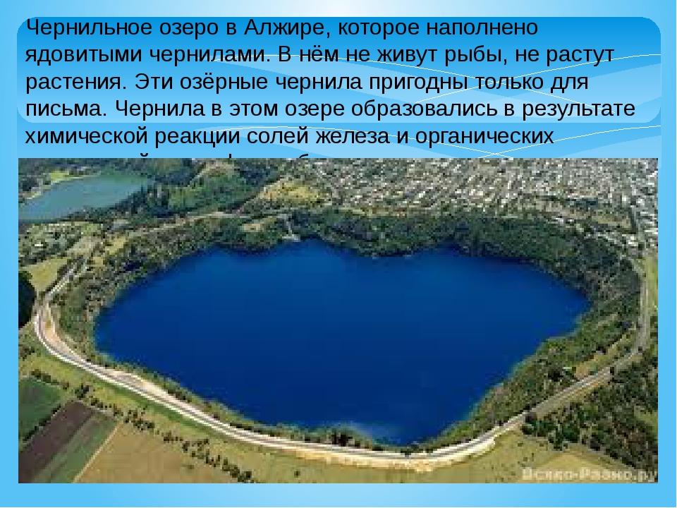 Чернильное озеро в Алжире, которое наполнено ядовитыми чернилами. В нём не жи...