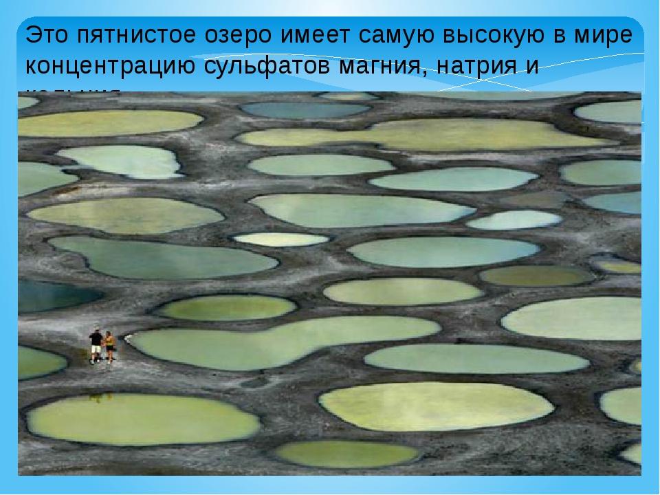 Это пятнистое озеро имеет самую высокую в мире концентрацию сульфатов магния,...