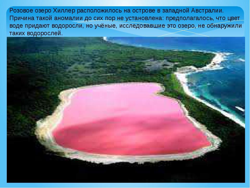 Розовое озеро Хиллер расположилось на острове в западной Австралии. Причина т...