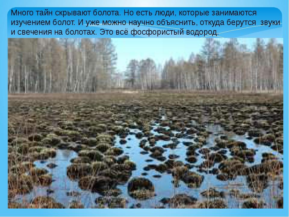 Много тайн скрывают болота. Но есть люди, которые занимаются изучением болот....