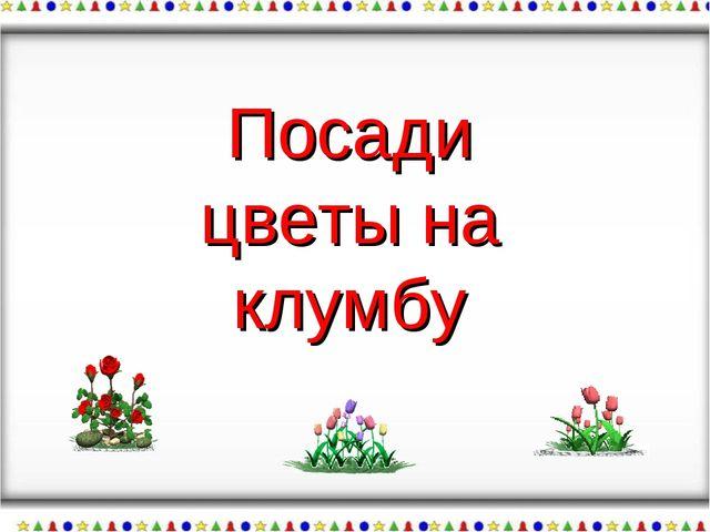 Посади цветы на клумбу