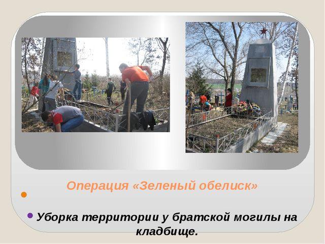 Операция «Зеленый обелиск»  Уборка территории у братской могилы на кладбище.
