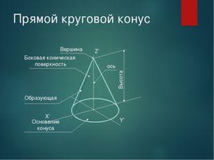 Прямой круговой конус X' Y' Z' Вершина Высота ось Боковая коническая поверхно