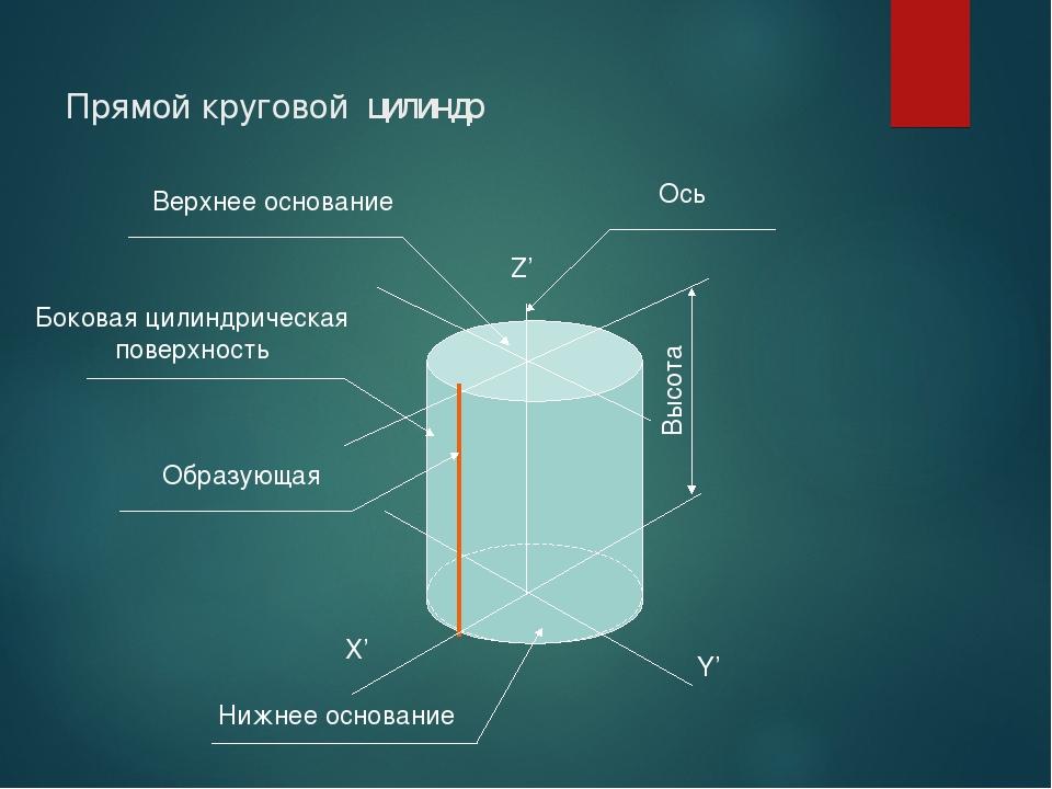 Прямой круговой цилиндр Х' Y' Z' Высота Ось Верхнее основание Боковая цилиндр...