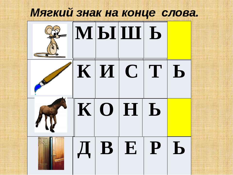 Мягкий знак на конце слова. 3+2= С Л О Н П Я Т Ь О К У Н Ь Г У С Ь