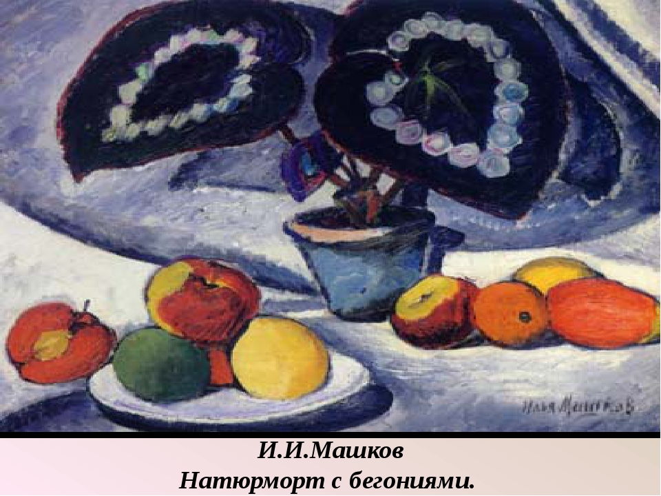 И.И.Машков Натюрморт с бегониями.