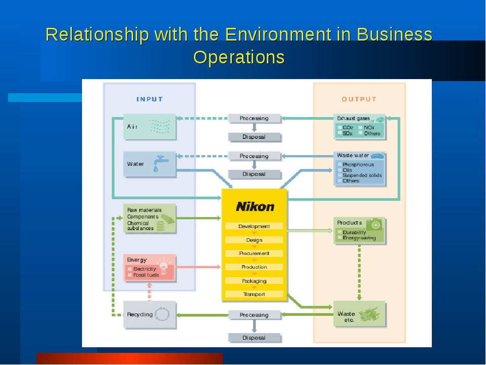 Relationship with the Environment in Business Operations