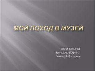 Проект выполнил Бричковский Артем, Ученик 5 «В» класса