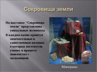 """На выставке """"Сокровища земли"""" представлены уникальные экспонаты. В каждом кам"""
