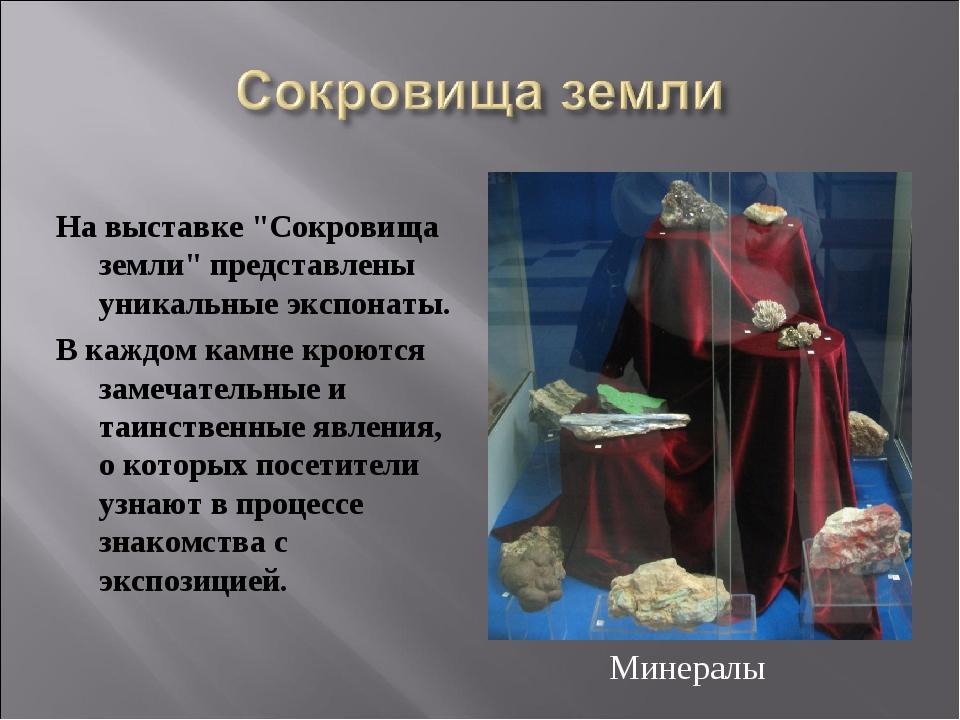 """На выставке """"Сокровища земли"""" представлены уникальные экспонаты. В каждом кам..."""