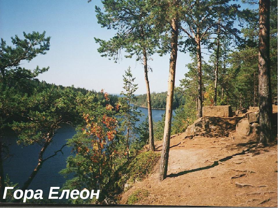 Гора Елеон