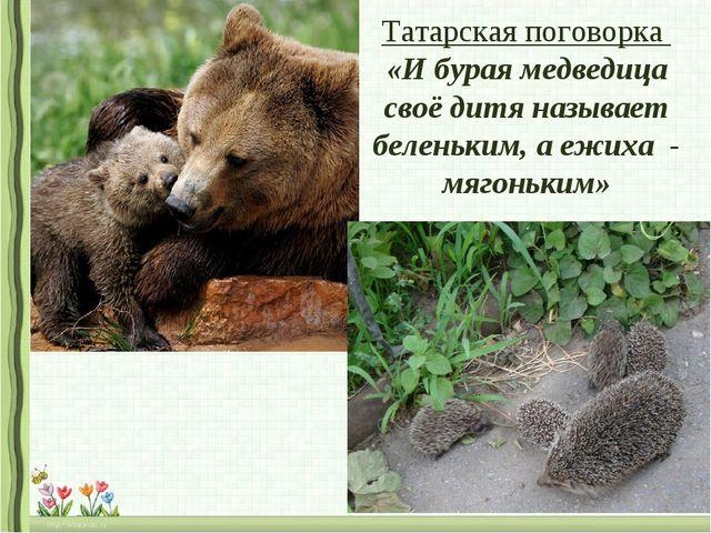 Татарская поговорка «И бурая медведица своё дитя называет беленьким, а ежиха...