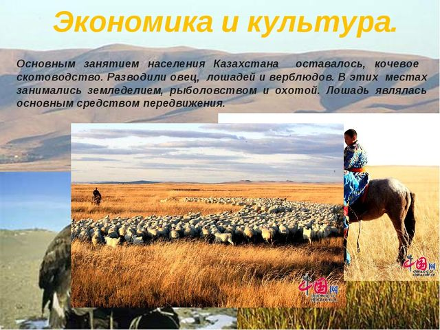 Экономика и культура. Основным занятием населения Казахстана оставалось, коч...