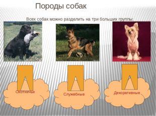 Породы собак Всех собак можно разделить на три больших группы: Охотничьи Служ