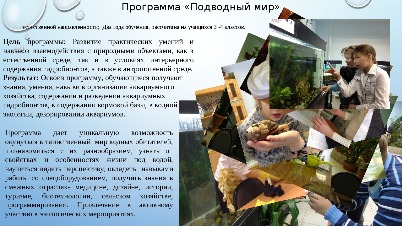 Программа «Подводный мир» естественной направленности; Два года обучения, рас...