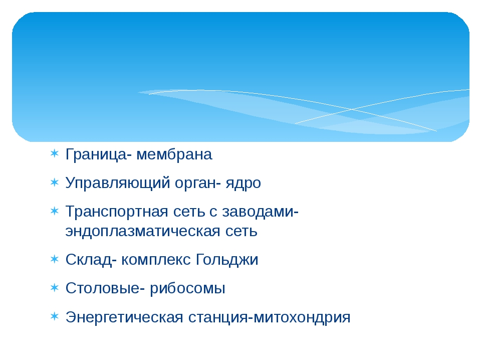 Граница- мембрана Управляющий орган- ядро Транспортная сеть с заводами-эндопл...