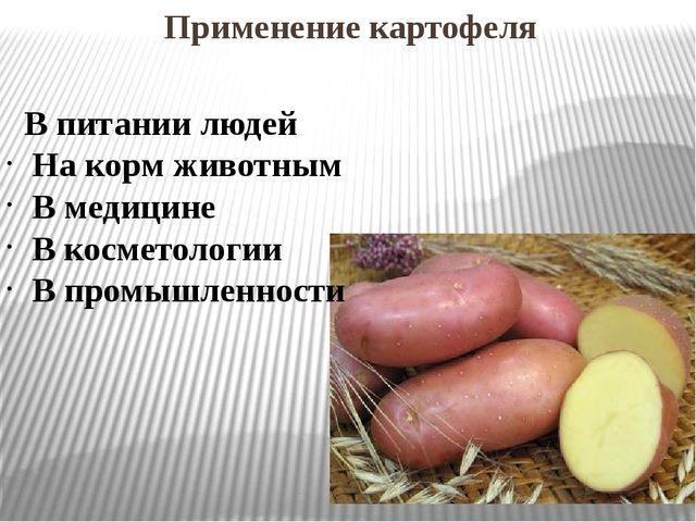Применение картофеля В питании людей На корм животным В медицине В косметоло...