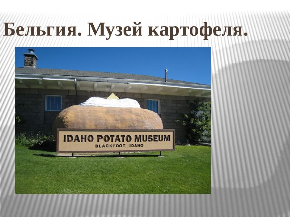Бельгия. Музей картофеля.