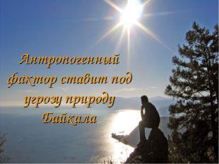 Антропогенный фактор ставит под угрозу природу Байкала