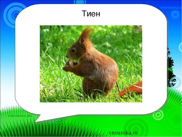 Тиен Бу нәрсә? vneuroka.ru