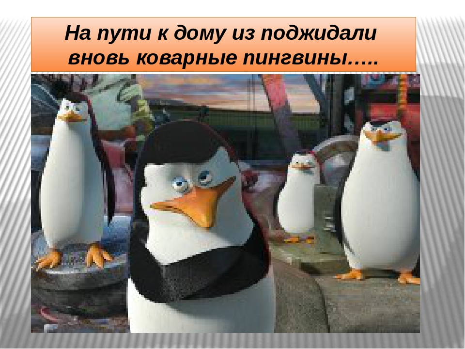 На пути к дому из поджидали вновь коварные пингвины…..