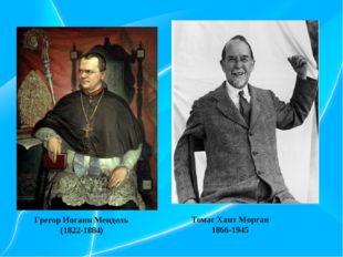 Томас Хант Морган 1866-1945 Грегор Иоганн Мендель (1822-1884)