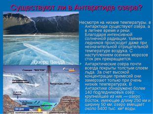 Существуют ли в Антарктиде озера? Несмотря на низкие температуры, в Антарктид
