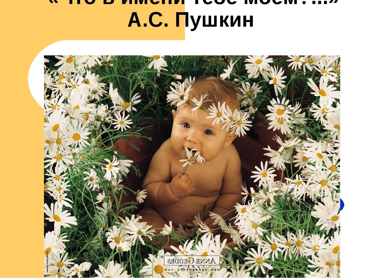 «Что в имени тебе моём?...» А.С. Пушкин